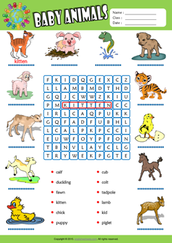 Baby Animals Word Search Puzzle ESL Vocabulary Worksheet