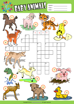 Baby Animals Crossword Puzzle ESL Vocabulary Worksheet