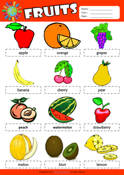 Fruits Picture Dictionary ESL Vocabulary Worksheet