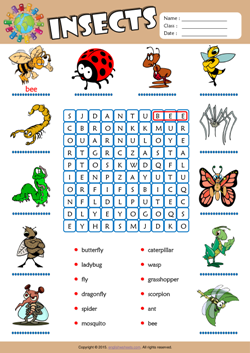 Insects Word Search Puzzle ESL Vocabulary Worksheet