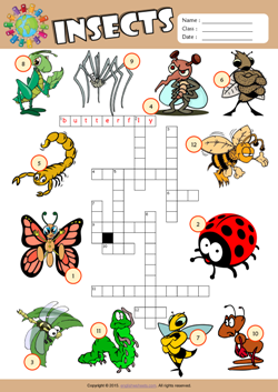 Insects Crossword Puzzle ESL Vocabulary Worksheet