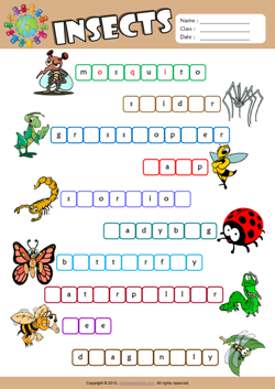 Insects Missing Letters in Words ESL Vocabulary Worksheet