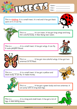 Insects Find the Words ESL Vocabulary Worksheet