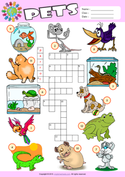 Pets Crossword Puzzle ESL Vocabulary Worksheet
