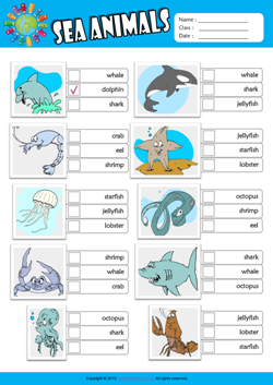 Sea Animals ESL Multiple Choice Worksheet For Kids