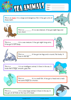 Sea Animals Find the Words ESL Vocabulary Worksheet
