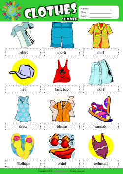 Summer Clothes Picture Dictionary ESL Vocabulary Worksheet