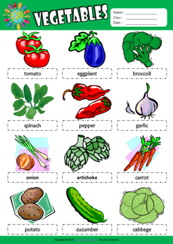 Vegetables Picture Dictionary ESL Vocabulary Worksheet