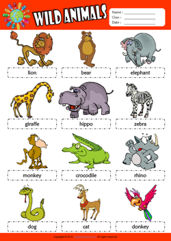 wild animals esl printable worksheets for kids 1. Black Bedroom Furniture Sets. Home Design Ideas