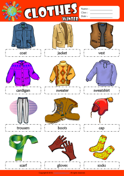 Winter Clothes Picture Dictionary ESL Vocabulary Worksheet